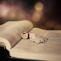 Woman sleeping on bible surreal image of a the pages of the Royalty Free Stock Image
