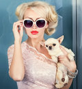 Woman with small dog attractive in sunglasses smal in hand Royalty Free Stock Images