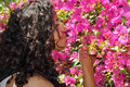 Woman smelling flowers portrait of Stock Photos