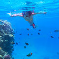 Woman snorkeling in red sea of egypt Stock Photo