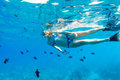 Woman Snorkeling in Tropical Ocean Stock Images
