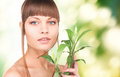 Woman with sprout picture of over green background Stock Photo