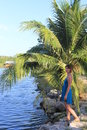 Woman standing near palm trees and a pond Stock Image