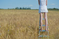 Woman stands on the stepladder Stock Images