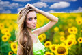 Woman with sunflowers on the field Stock Photography