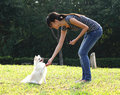Woman train her dog Royalty Free Stock Images