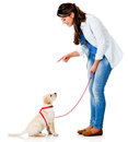 Woman training her dog Royalty Free Stock Photo