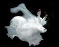 Woman Underwater Wearing White Gown Royalty Free Stock Photo