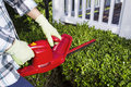 Woman using electrical power trimmer to cut bushes horizontal photo of and cutting the hedges with patio in background Stock Photos
