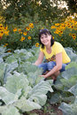 Woman in vegetable garden Royalty Free Stock Image