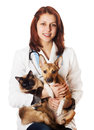 Woman vet with pets on a white background isolated Stock Photo