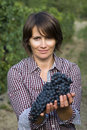 Woman in vineyard closeup of during harvest season Royalty Free Stock Images