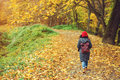 Woman walking in autumn park. View from the back. Royalty Free Stock Photo