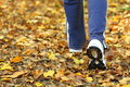 Woman walking cross country trail in autumn forest Royalty Free Stock Photo