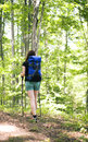 Woman walking in the forest  Stock Images