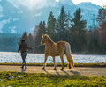 Woman walking horse her in the sunset light uetendorf switzerland Stock Photo
