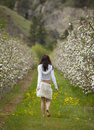 Woman Walking in Orchard Stock Image
