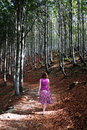 Woman walking in sunlit woods Royalty Free Stock Images