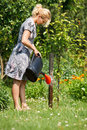 Woman watering apple tree Royalty Free Stock Photo