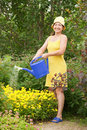 Woman watering flowers Stock Images