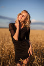Woman in wheat field under blue sky Royalty Free Stock Photo