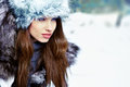 Woman in the winter scenery Stock Photography