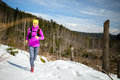 Woman winter trail running in mountains on snow Royalty Free Stock Photo