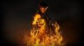 Woman wizard summoning fire