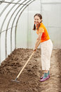 Woman  working with rake in greenhouse Stock Photo
