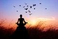 Woman Yoga And Meditating, Sil...