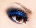 Womanish eye close up of beautiful Stock Photography