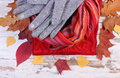 Womanly clothes and autumnal leaves on old rustic wooden background Royalty Free Stock Photo