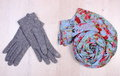 Womanly clothes on wooden background clothing for autumn or winter surface plank gloves and shawl scarf warm Stock Image