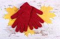 Womanly gloves and autumnal leaves on old rustic wooden background Royalty Free Stock Photo