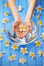 A womans hands holding a single frangipani flower above a glass bowl filled with water on a blue painted background and many more Royalty Free Stock Images