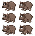 Wombat with different emotions
