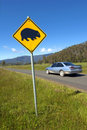Wombats crossing sign and speeding car. Stock Photo