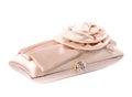 The women clutch bag elegant on white background Stock Image