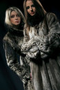 Women in fur coats Stock Photography