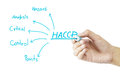 Women hand writing meaning of HACCP concept (Hazard Analysis of Critical Control Points) on green background Royalty Free Stock Photo