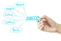 Women hand writing meaning of HACCP concept (Hazard Analysis of Critical Control Points) on white background Royalty Free Stock Photo