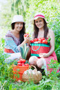 Women with  harvested vegetables Royalty Free Stock Photography