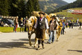 Women horses oktoberfest in gerlos austria with celebrating on the streets of on the last weekend of september Stock Image