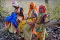 Women Labour in India Royalty Free Stock Photo