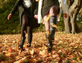 Women legs two playing with autumn leaves Stock Photos