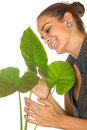 Women maintain plant gently with her hands Stock Photos