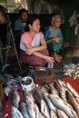 Women market in India Royalty Free Stock Photo