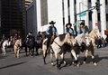 Women riders in national western stock show parade the annual kick off january downtown denver th street Stock Image
