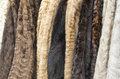 Women s fur coats on display of different colors aligned forming a background Royalty Free Stock Photo