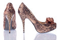 Women's  shoes  leopard Stock Photo